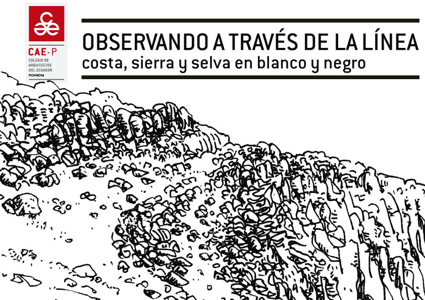 OBSERVANDO A TRAVÉS DE LA LÍNEA